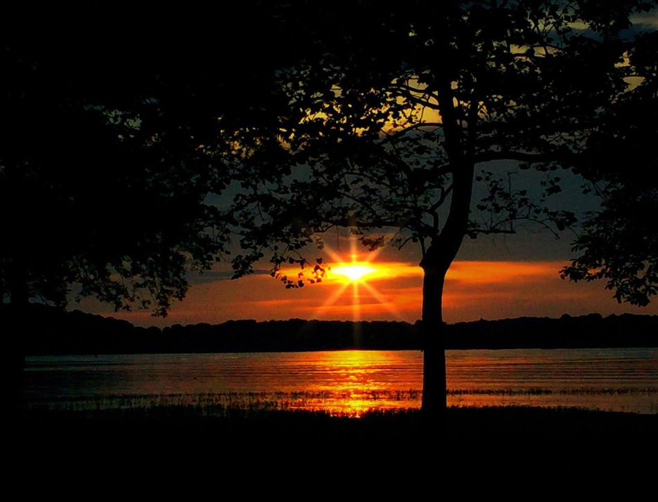 Sunset Nature Tree Tranquility Water Beauty In Nature Reflection Sun Scenics Idyllic Tranquil Scene No People Outdoors Silhouette Sky Cloud - Sky Lake River Landscape