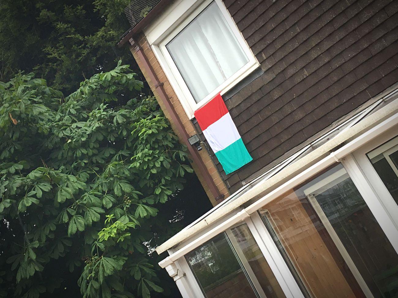 Hungary Hungarian Flag Magyarország Euro2016 Magic Hun Football Foci Büszkeség Proud Győzelem Win Red White Green
