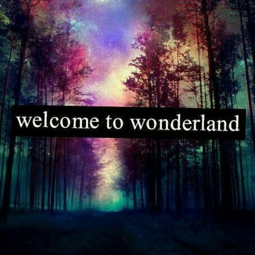 Welcome..