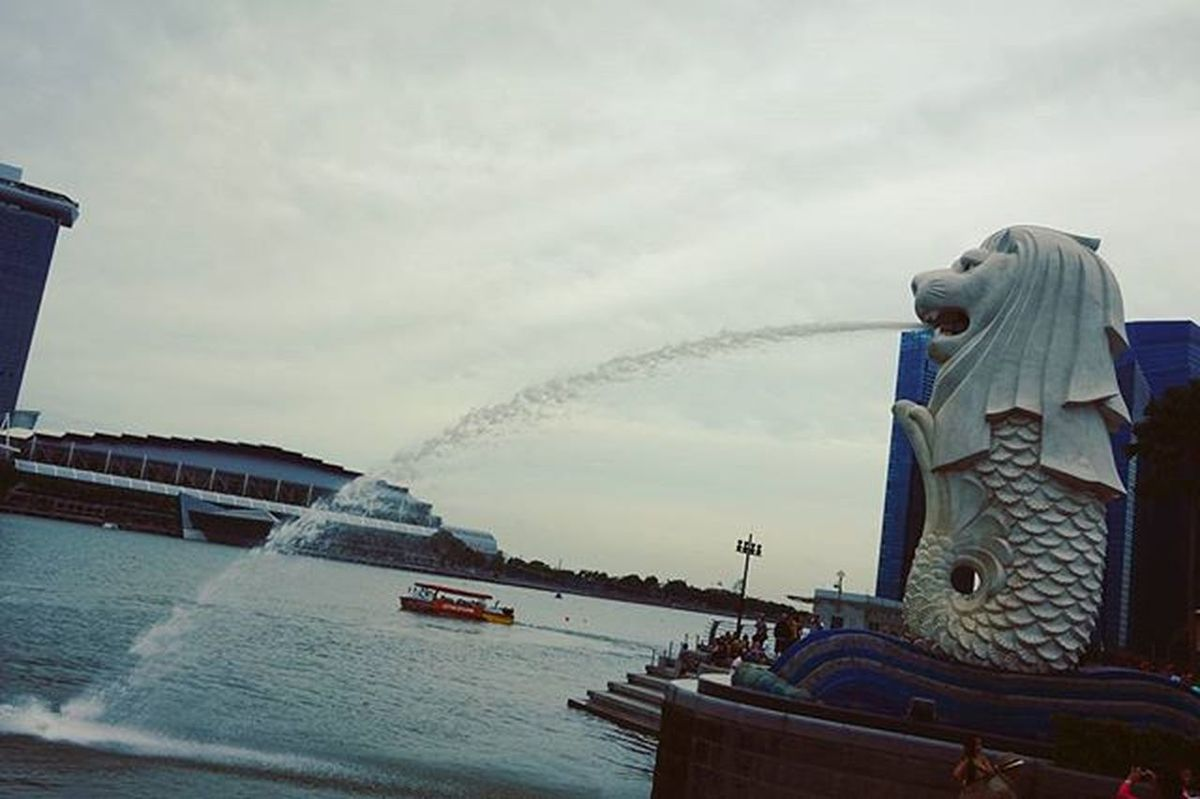 The merlion, the guy whom i feel the most sorry for, living its lonely, daily life of sitting by the bay, watching people have fun, and most of all, watching people look at it and snap pictures of it peeing through its mouth as it has no choice at all. Merlion Marinabaysands Marinabay Singapore Visitsingapore ExploreSingapore Alone Sad Life Excellent_structure Photooftheday Landscape Urban Lonely Holiday Boredom Tv_simplicity Tv_pointofview Vsco_hub VSCO Vscocam Vscogood Photography Instagram Attractions unique minimal_perfection minimalism minimalexperience ig_minimalshots