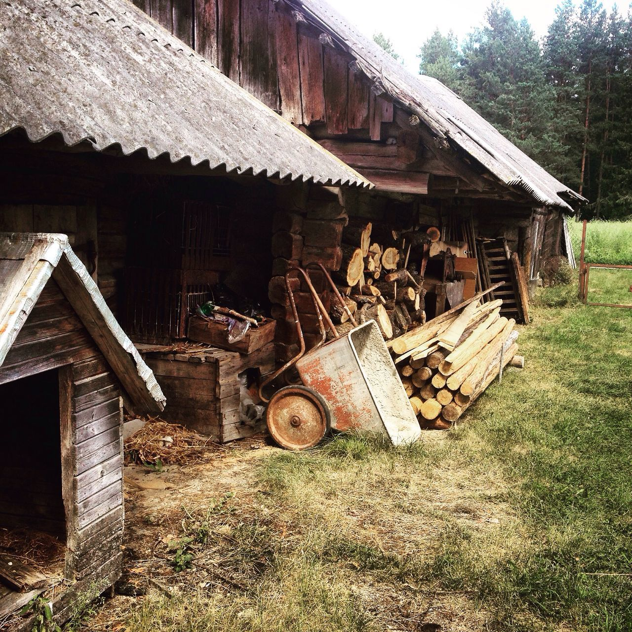 wood - material, grass, architecture, day, building exterior, field, abandoned, built structure, house, no people, outdoors, barn, tree, nature