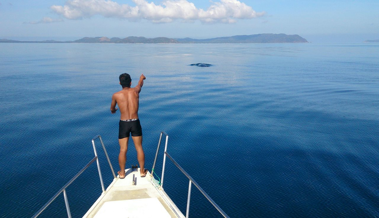 """Showcase: February Spotted a sperm whale early in the morning. 😊 Surf's Up Palawan, Philippines Photography In Motion Here Belongs To Me Blue Wave The Great Outdoors With Adobe The Great Outdoors - 2016 EyeEm Awards Feel The Journey People Of The Oceans """"oh, there he is"""" On The Way Color Palette EyeEm X Canon - Feel The Journey"""