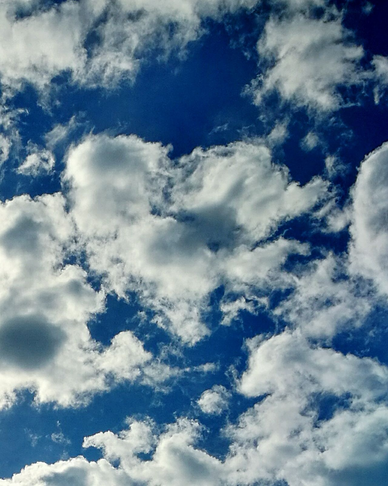 Cloud - Sky Sky Heart Of Clouds Cloudyheart Nature Beauty In Nature Low Angle View Cloudscape Dramatic Sky Heart In The Sky! Heart In Nature Scenics Heaven Clear Sky Storm Cloud