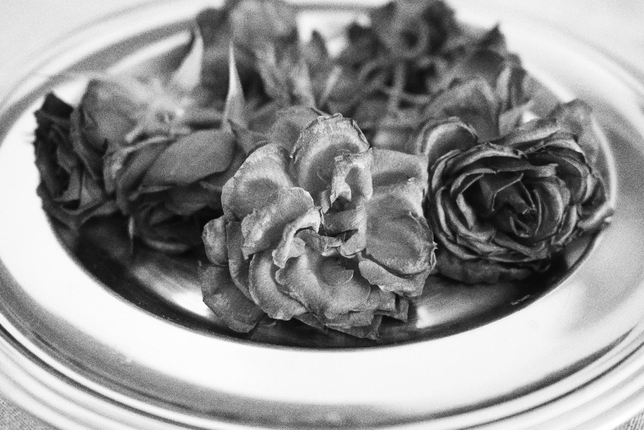 Indoors  No People Full Frame Monochrome Focus On Foreground Day Plate Home Interior Roses Rosé Faded Beauty Faded Flower Faded Color Greyscale Flowers