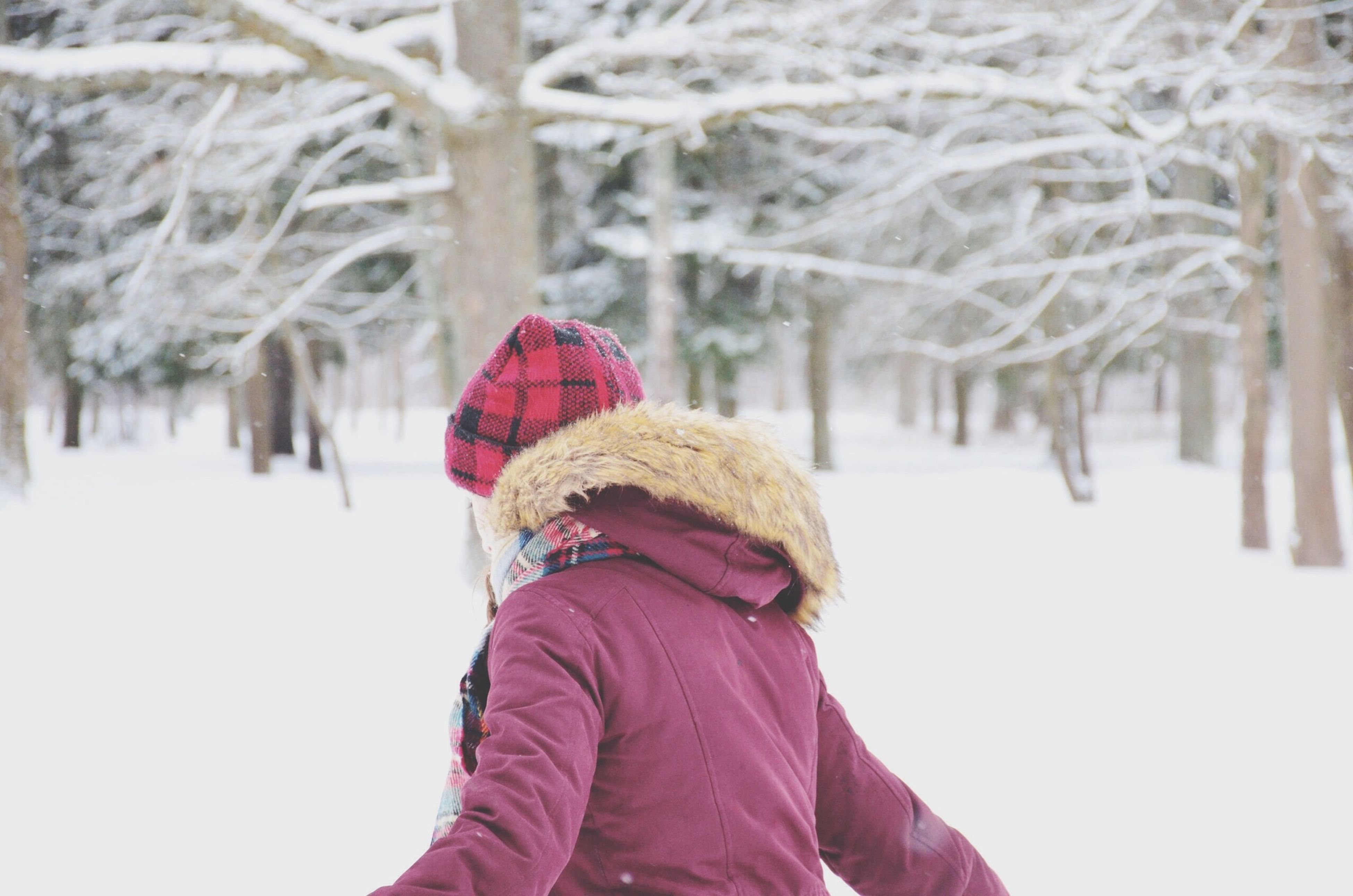 winter, snow, cold temperature, season, warm clothing, lifestyles, leisure activity, weather, rear view, focus on foreground, covering, standing, frozen, men, casual clothing, knit hat, umbrella, day