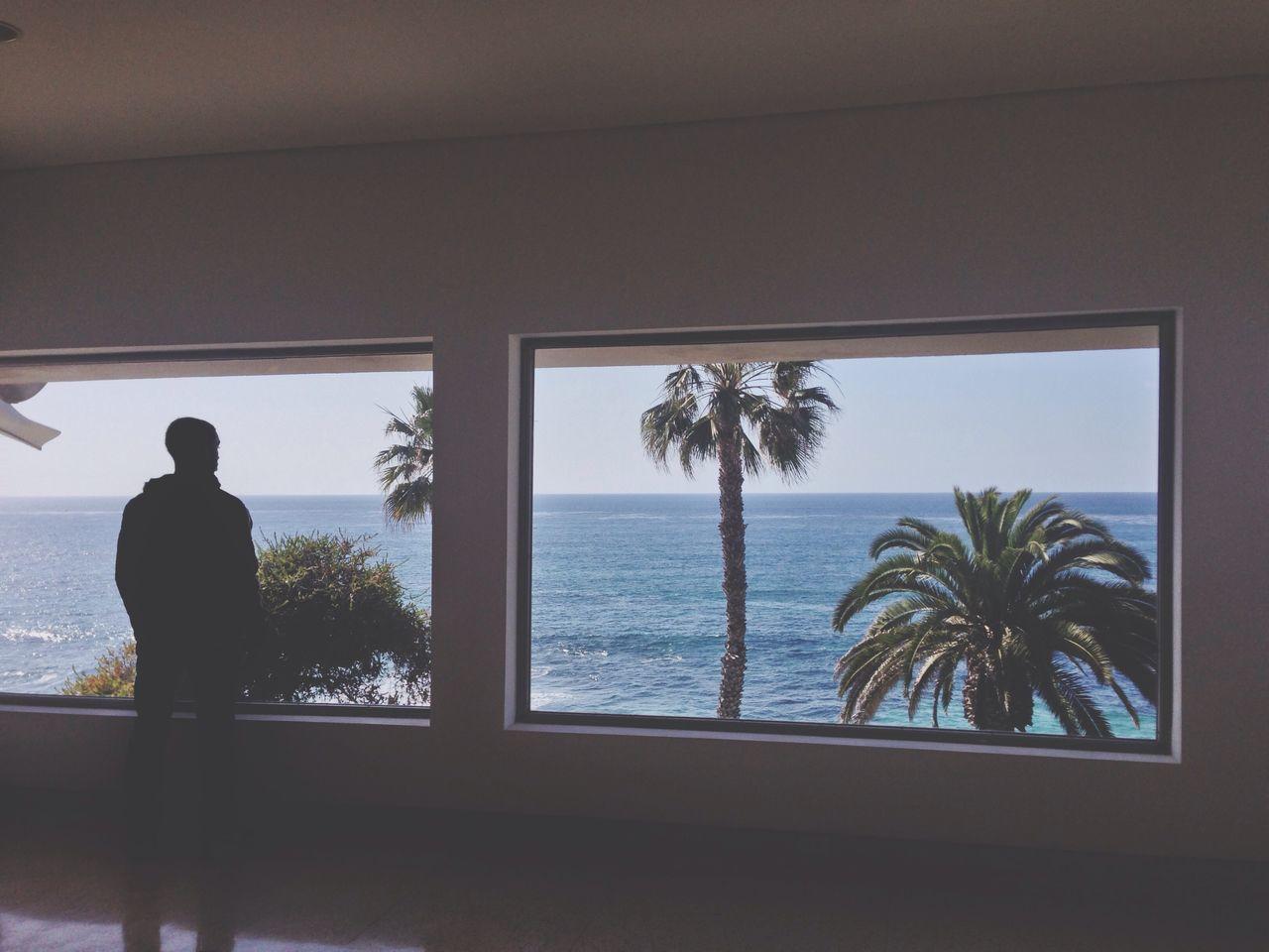Beautiful stock photos of window, Full Length, Horizon Over Water, Indoors, La Jolla
