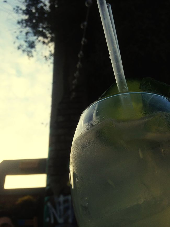 Botanicalgardn Baltic Triangle Gin Fizz