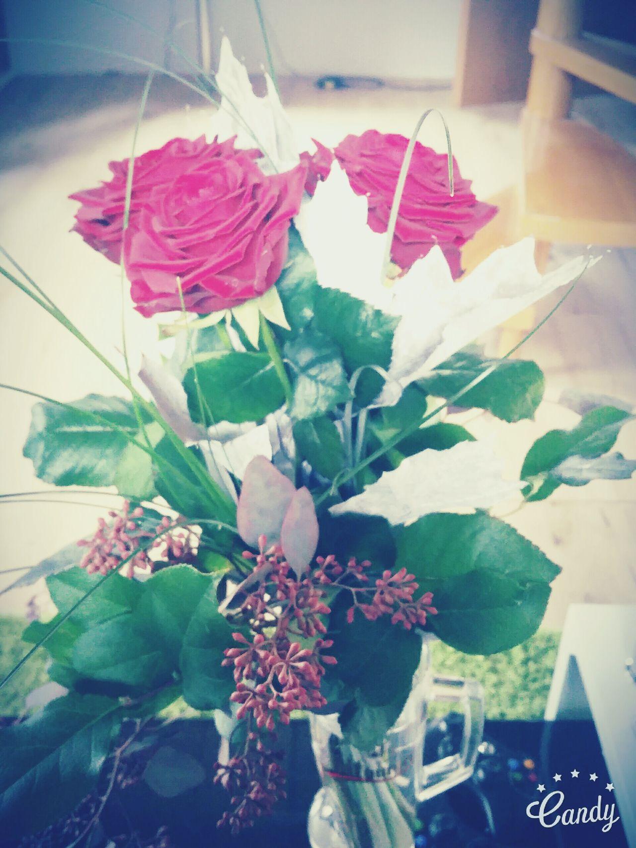 Boyfriend❤❤ Geburtstagsgeschenk Loveyou♥ First Eyeem Photo