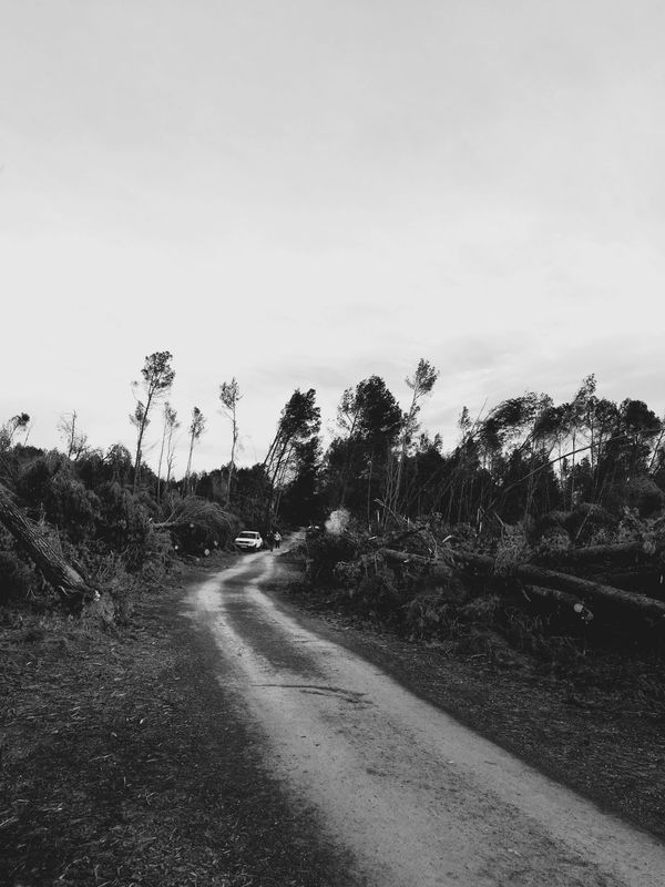Exploring the disaster that hit us weeks ago | Nature Blackandwhite IPhoneography Open Edit