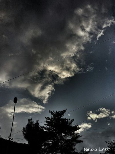 Clouds Tree Enjoying Life Taking Photos