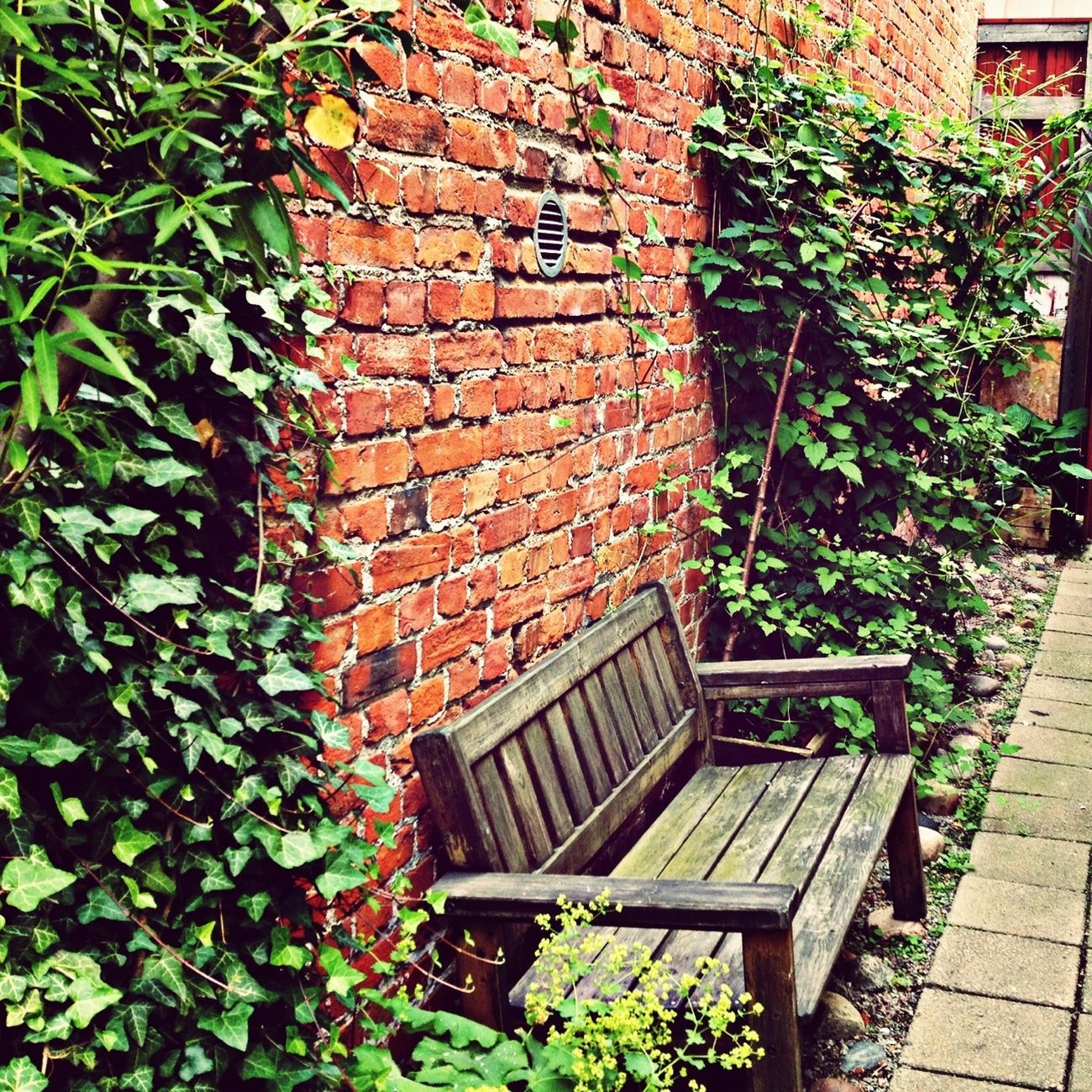 Relaxing Garden Bench My Town