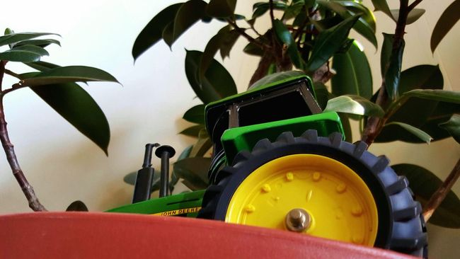 Tractor Toy Shadows & Lights House Plant Home Sweet Home Interior Design Simple Beauty Learn & Shoot: Simplicity Home Interior Homedecor Hi! Just Chilling Playing With Pictures. Country Life Plants 🌱 Automobile Green Leaves Hanging Out