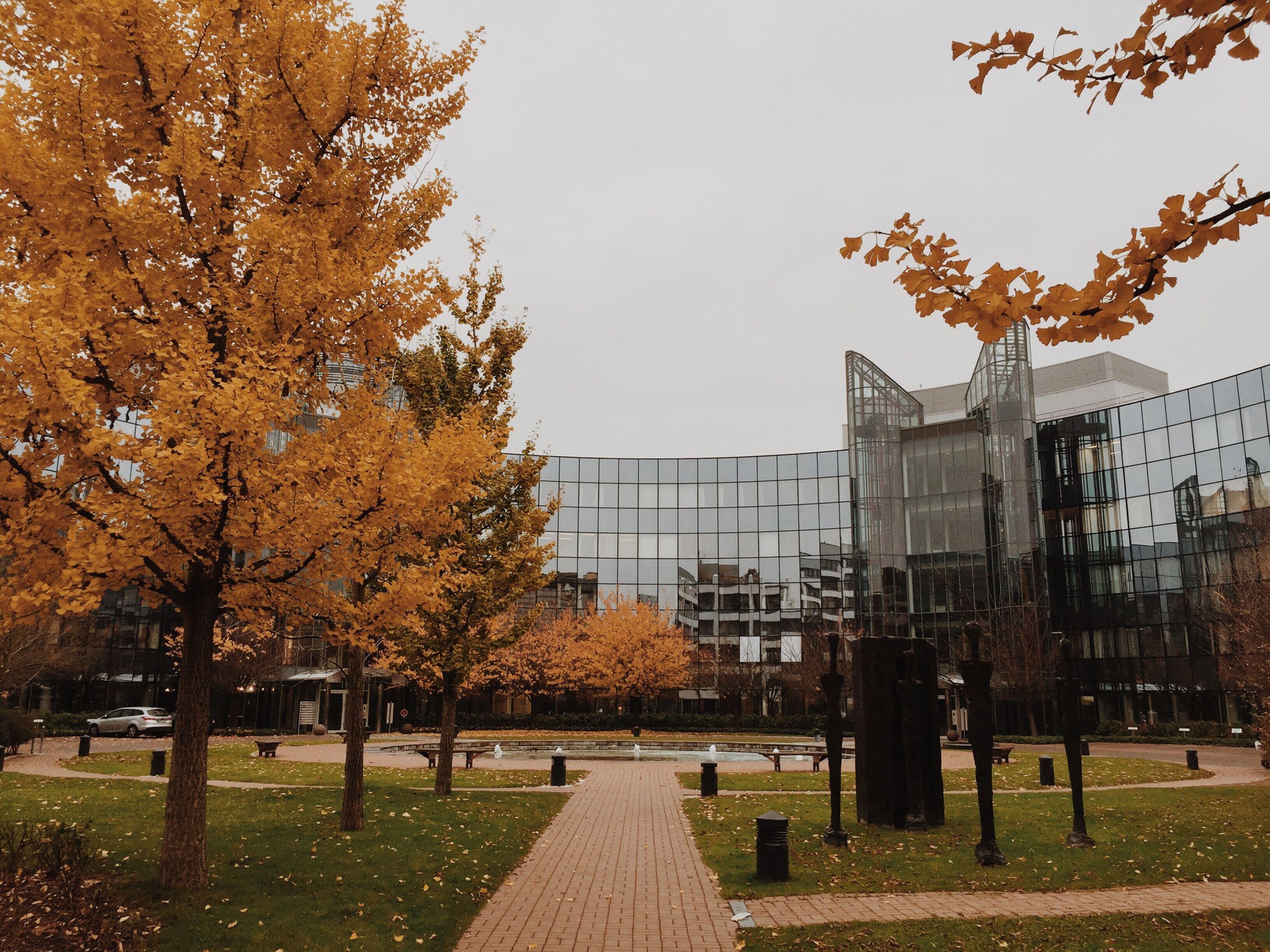 Autumn Tones Autumn Autumn Colors Düsseldorf Germany
