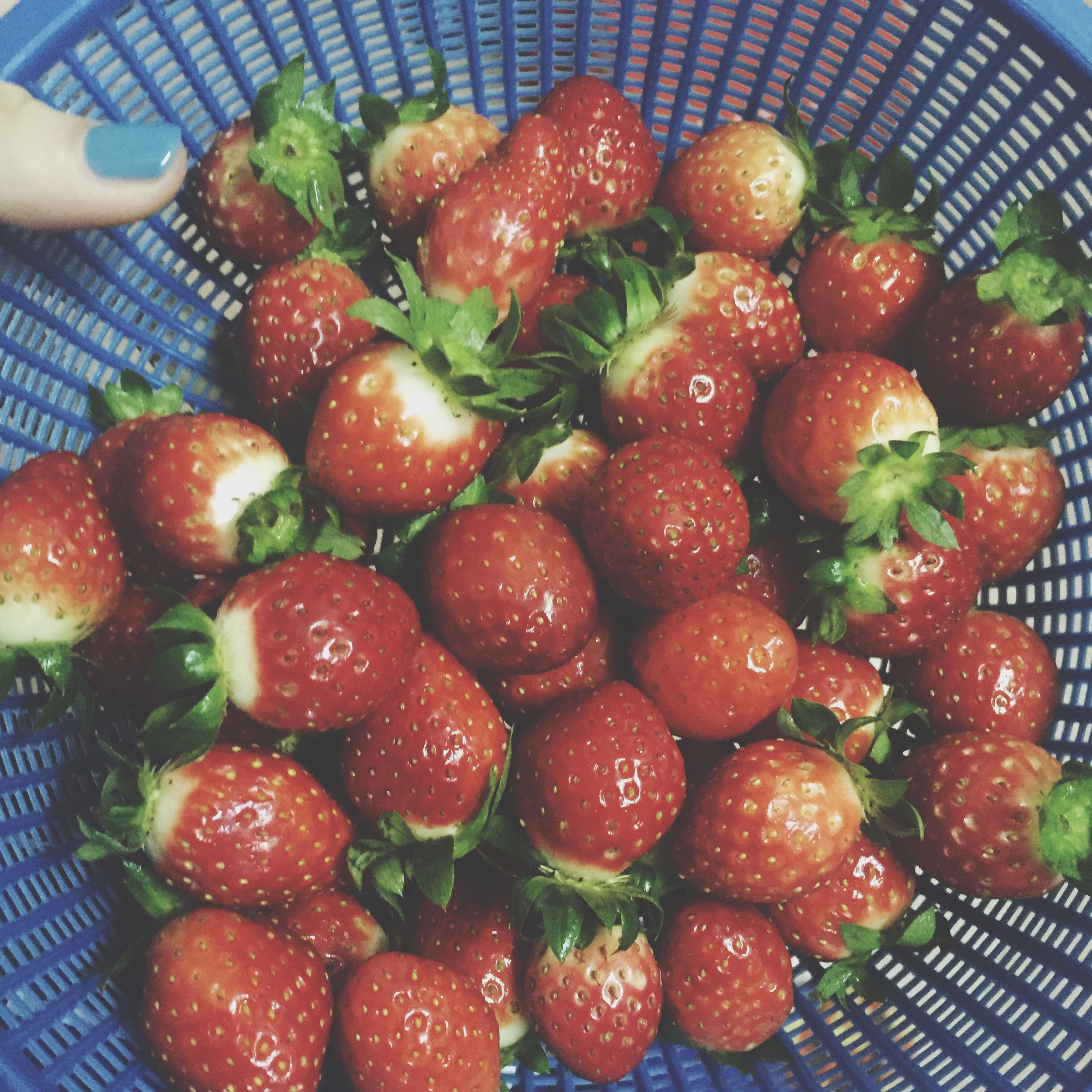 food and drink, food, freshness, healthy eating, fruit, indoors, red, strawberry, still life, abundance, close-up, large group of objects, high angle view, ready-to-eat, bowl, organic, healthy lifestyle, ripe, juicy, no people