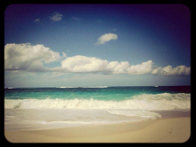 Island Life Beach Photography EyeEm Nature Lover Nassau, Bahamas