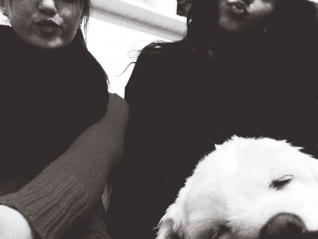 Sisters DogLove Hanging Out Relaxing Happiness Selfie Lovelovelove Great Evening Yesterday Tbt ❤ 👭🐶❤️