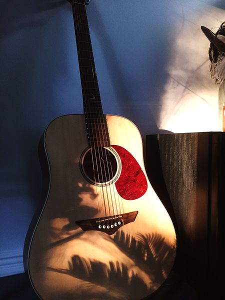 Sunset, guitar and a plant. The potion for a summer feeling. Music Guitar Arts Culture And Entertainment Indoors  Musical Instrument Home Interior No People Day Sun Sunset Shadow Shadows & Lights Summer Springtime