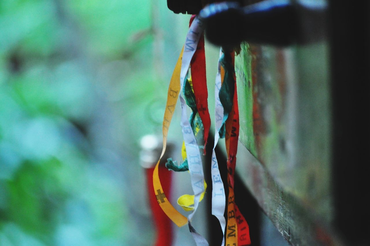 Beautiful stock photos of bow, Close-Up, Colorful, Day, Focus On Foreground