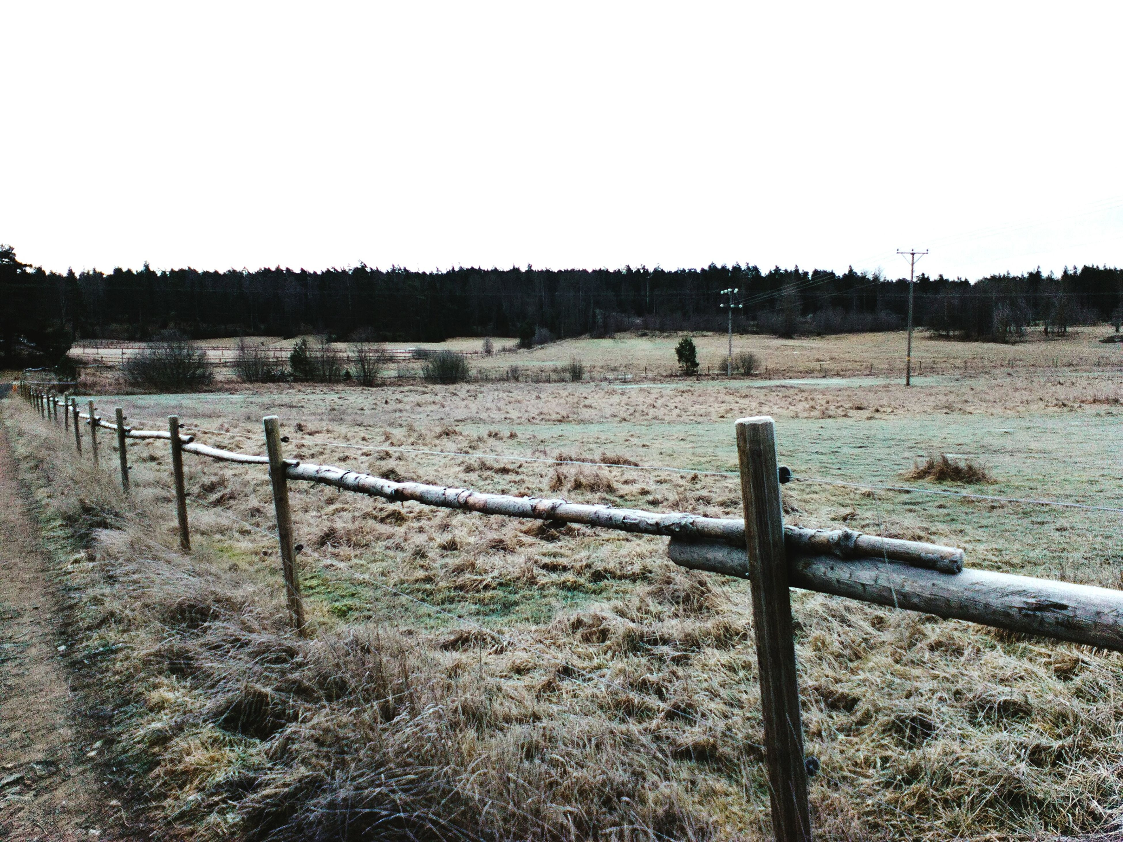 fence, field, landscape, tranquility, tranquil scene, clear sky, grass, protection, nature, rural scene, safety, copy space, wooden post, scenics, sky, wood - material, security, beauty in nature, no people, non-urban scene