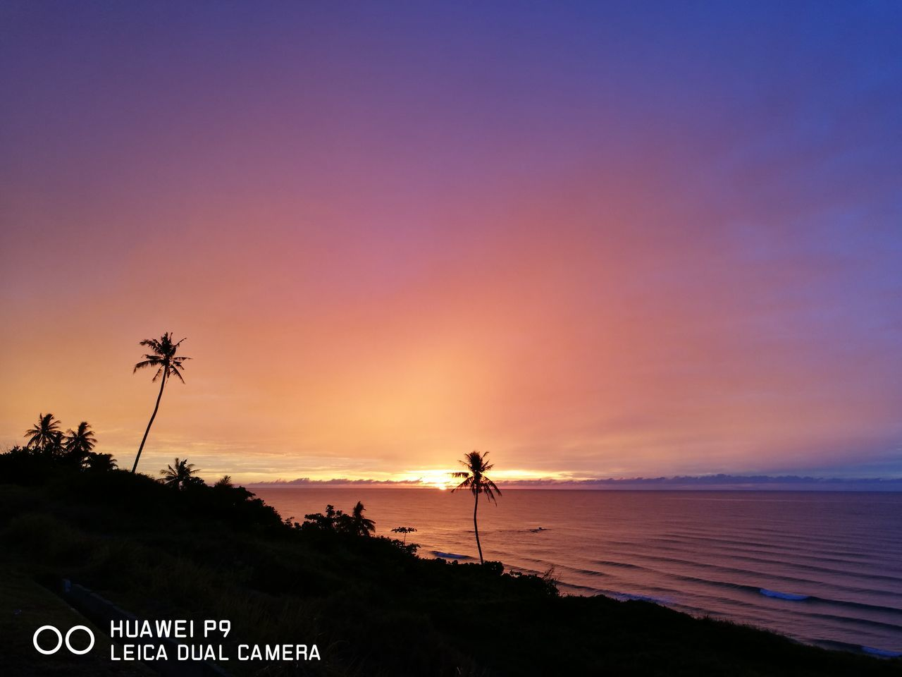 sunset, palm tree, sea, beauty in nature, beach, scenics, silhouette, nature, tranquil scene, tranquility, outdoors, sky, tree, horizon over water, growth, vacations, no people, water, day