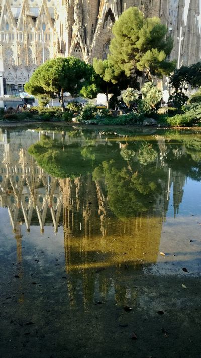 Reflection Water Day Park Art Is Everywhere Travel Destinations Pond Architecture Catalunya BCN Barcelona