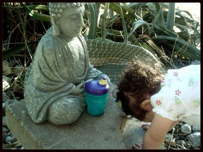 my little dakini, making her first offering to the Buddha. postrations and a sippy cup. love this. Family Matters Buddha Nature Atxkids