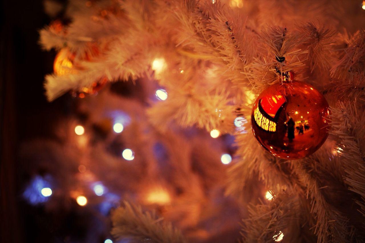 Beautiful stock photos of christmas tree, Celebration, Christianity, Christmas, Christmas Bauble
