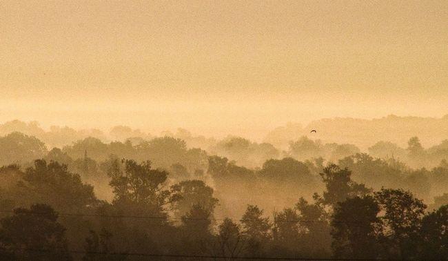morning haze Taking Photos Eye4photography  Nature Landscape