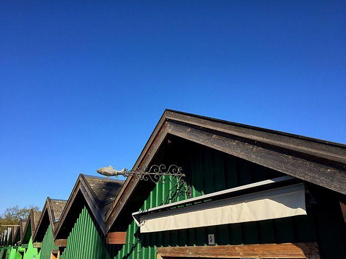 Architecture Clear Sky Roof BootshausAmSee Frühling Fisch Dach Grün Hütte Dächer Holzhütte Holzdach Fischerei