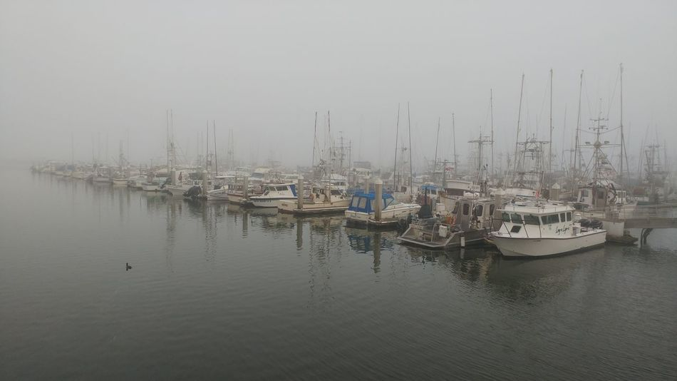 Harbour View Fishing Boat Foggy Day Reflection