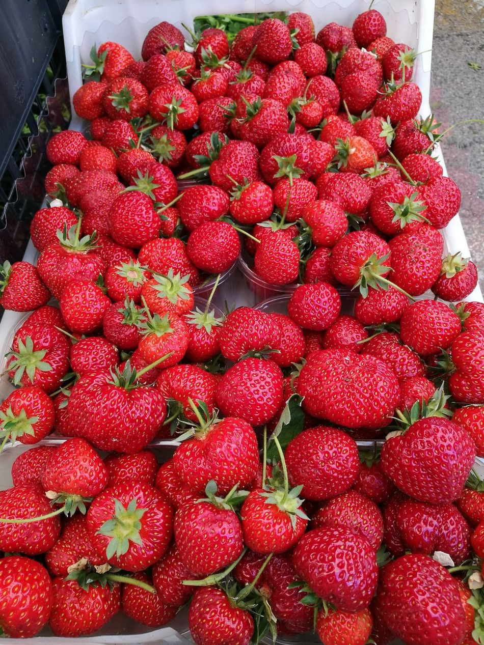 Red Fruit Freshness Strawberry Food And Drink Food Healthy Eating Abundance Large Group Of Objects Market For Sale Ripe Heap No People Healthy Lifestyle Retail  Stack Day Sweet Food Outdoors Color Photography Fragole Fragole,strawberries Strawberries ♡