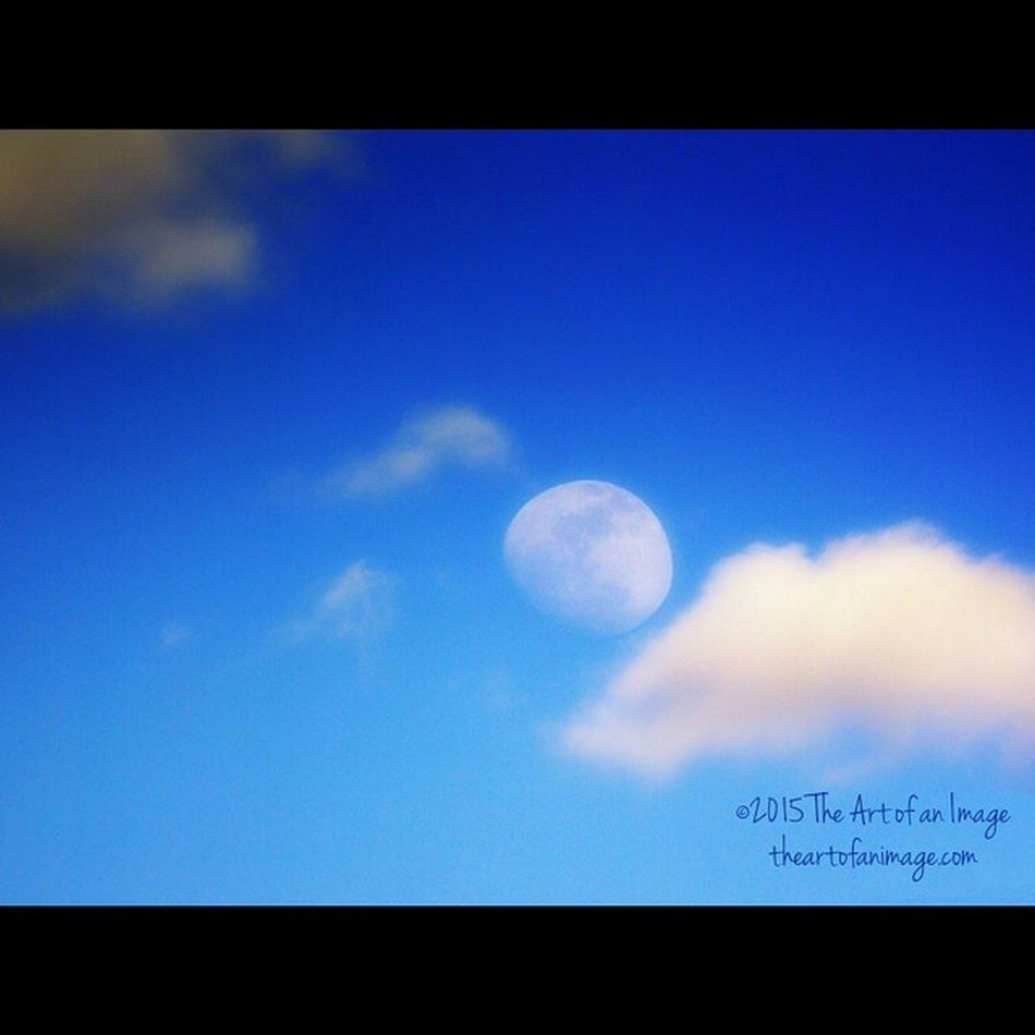 """An Early Evening Moon"" March 2013 ☮ www.theartofanimage.com"