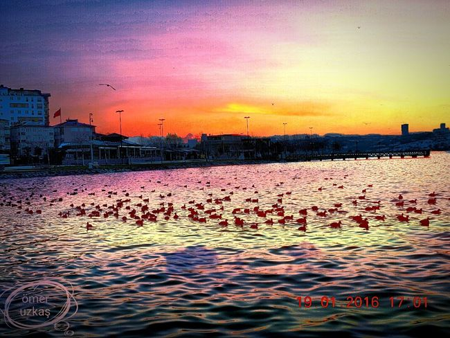 Gün Batımı First Eyeem Photo The Great Outdoors With Adobe Doğalcennet Nature Güneşışığı Güneş Bize Gülüyor Güneşigördüm ışık Yansıma Istanbul Turkey Istanbulove Istanbul City Küçükçekmece Küçükçekmecesahil Küçükçekmece Gölü Clorful Alone