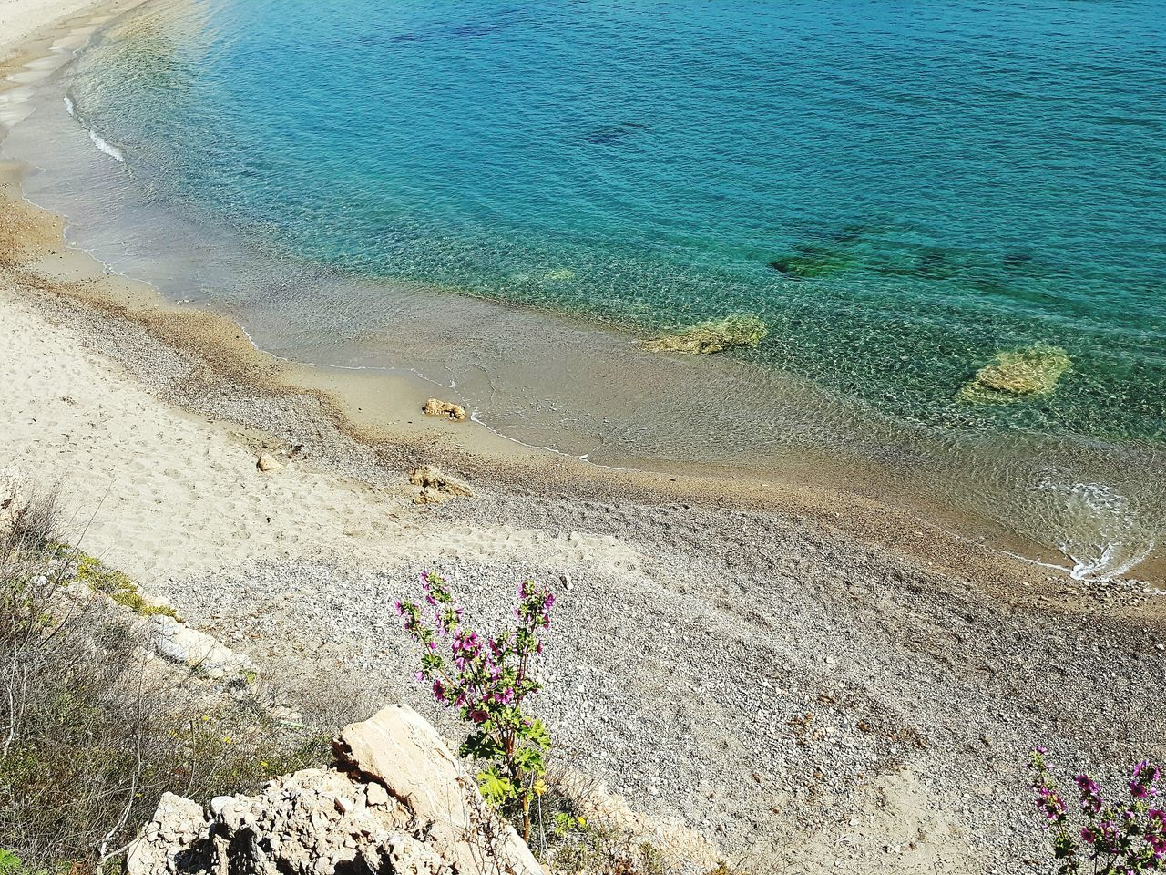 beach, high angle view, beauty in nature, sea, nature, sand, water, day, outdoors, scenics, tranquility, tranquil scene, no people, horizon over water, flower, sky
