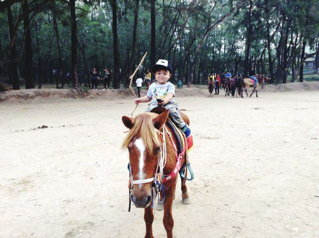 Baby love.♡ Vacation Baguio City, Philippines Wrightpark Horseriding