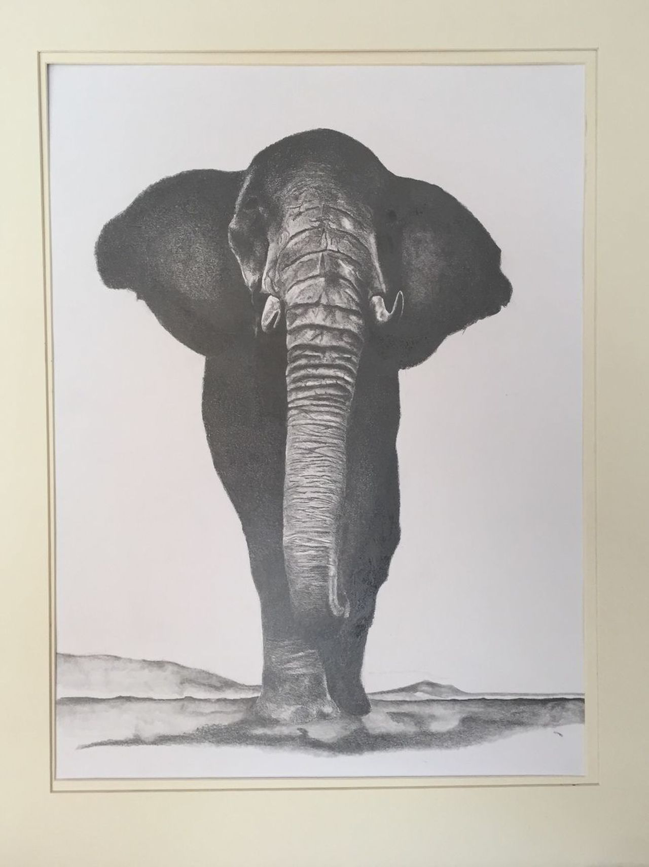 Elephant One Animal White Background Drawing Artist Light And Shadow Art, Drawing, Creativity Pencil Drawing Pencil And Paper Pensil Draw Pencil Artist