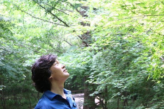 선운사 Road Trip Enjoying Life Trees Relaxing Leafs Man Side View Inspirations Rays Of Light Woods