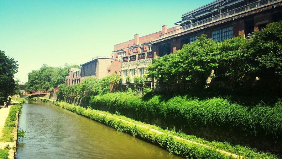 Awesome morning walk thru Georgetown C&O canal...