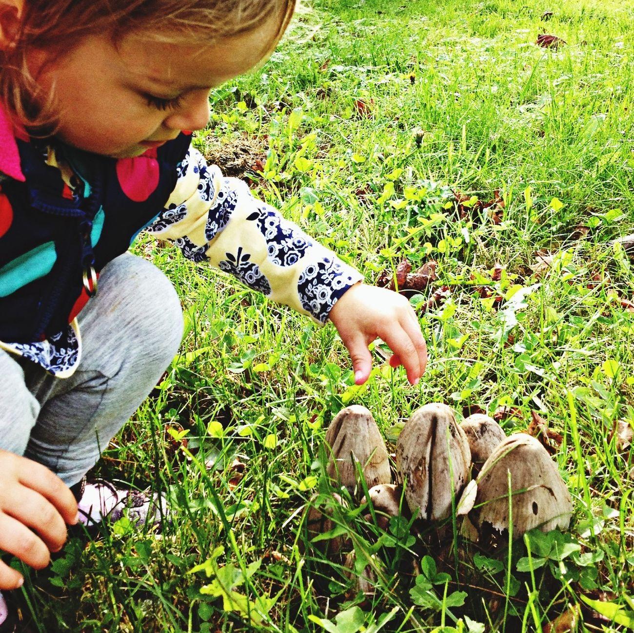 Nina and the mushrooms Nature Mushrooms