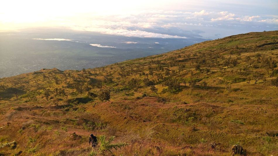 Cameroon Landscape Mount Cameroon Mountain Nature View
