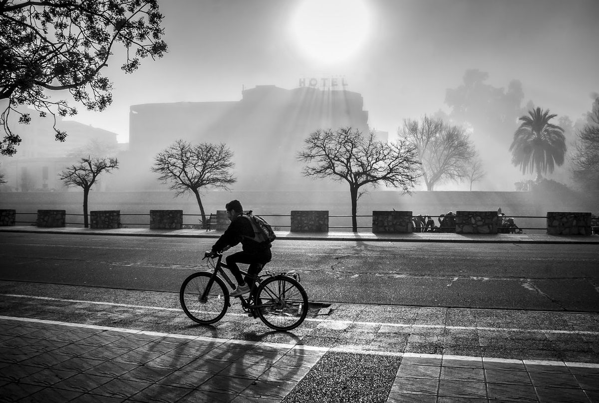 Bicycle Street Tree Riding Day Transportation Outdoors City People Black And White Photography Black & White Blackandwhitephotography Blackandwhite Photography Extremadura Black&white Extremadura, Spain Extremadura Spain Badajoz, Spain Extremadurafotos Foggy Weather Foggymorning Fogg