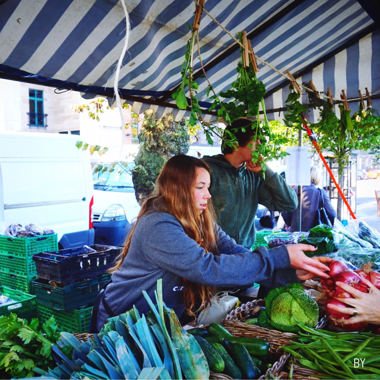 Check This Out Hanging Out Farm Markets