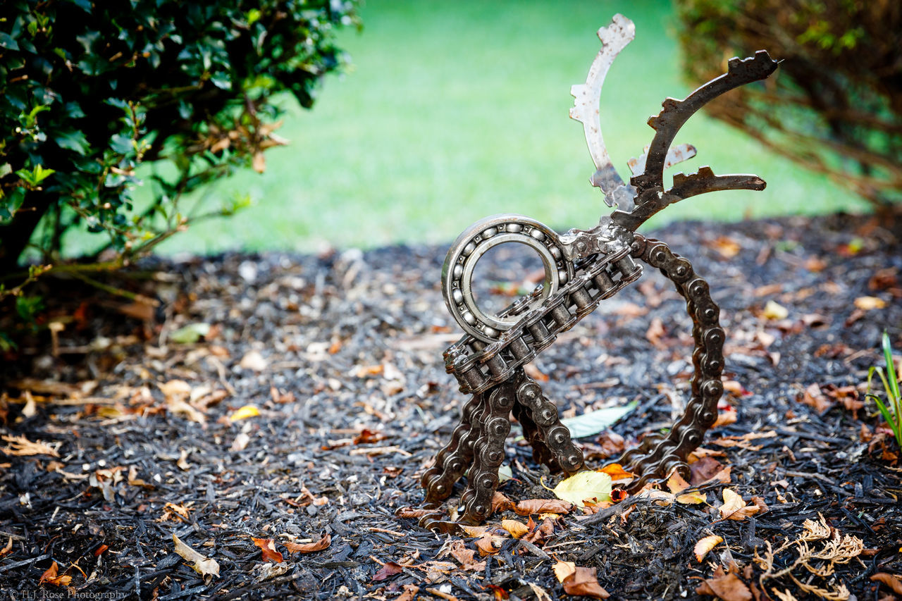 A beautiful, crisp fall morning in Northeast PA, USA. Art courtesy of @KeithBooth. Focus On Foreground Leaves Plant Nature Non-urban Scene Growth Day Outdoors Fragility Tranquility No People Plant Life Green Color Yard Art Metal Art Metalwork Repurposed Art Weldingart Welding Artpiece Metal Sculpture Weeping Angel Canon 5dsr Canon 24-70 24-70mm L F/2.8 || USM