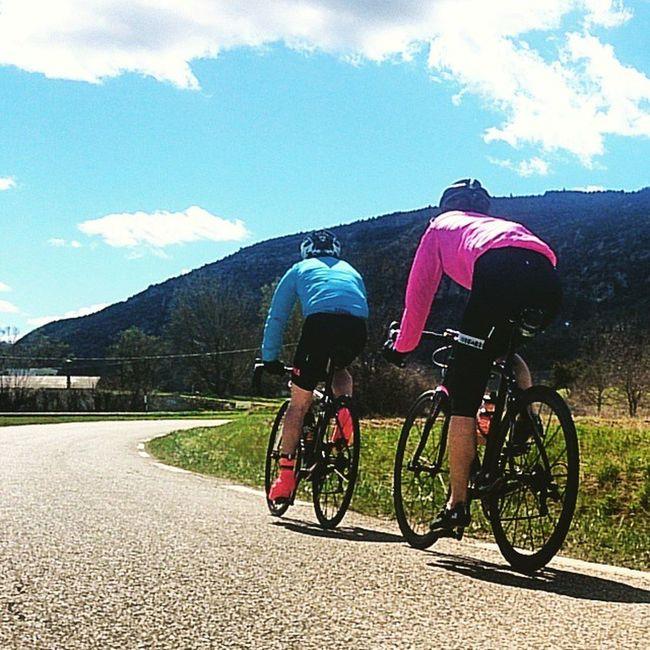 Les fleurs de provence en route vers les gorges de la nesque. Cycling Cycliste Womenscycling