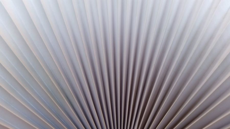 A close up of a paper fan. Backgrounds Pattern Striped Full Frame No People Textured  Close-up Abstract Nature Outdoors Day Paper Fan Culture