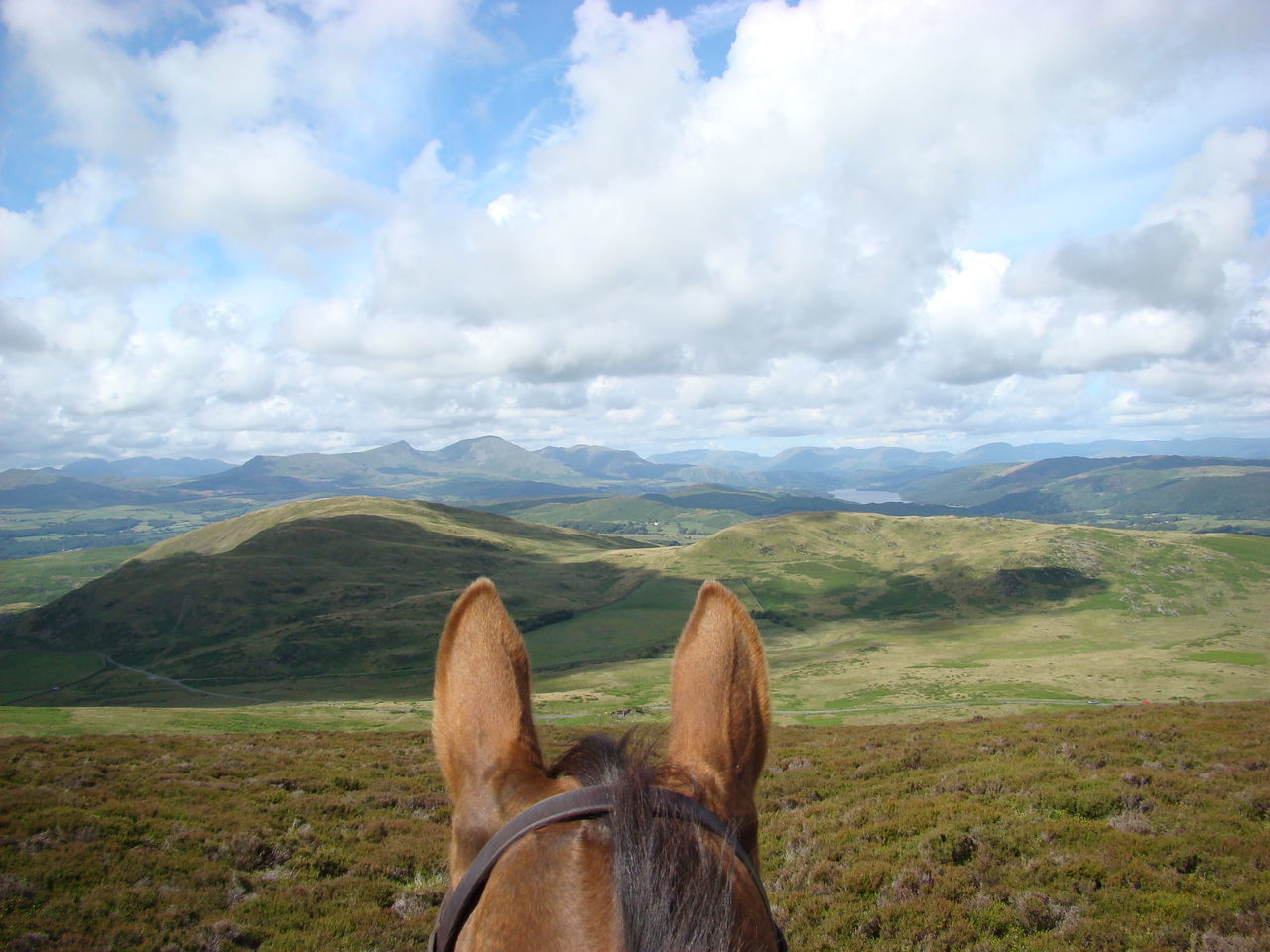 Through Horses Ears. Gareth DaBell Equestrian Horse Horse Photography  Horse Riding Landscape Mountains Outdoor Photography Outdoor Sports Personal Perspective Remote Sky Throughhorsesears Throughmyeyes Trekking