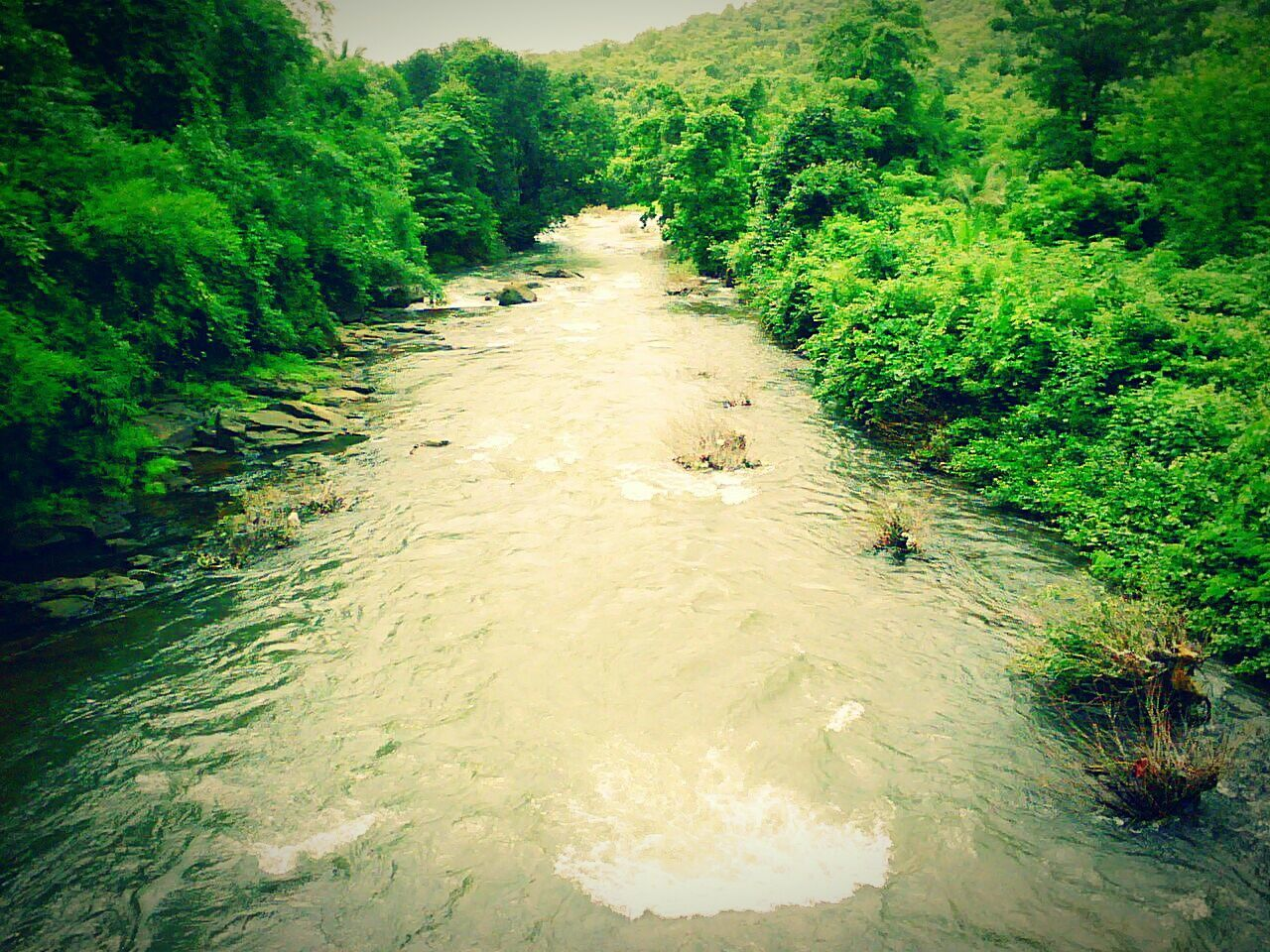 Nature Photography Nature Scenery River River View MyClick Smartphonephotography Scenery Shot 1.2 Megapixel