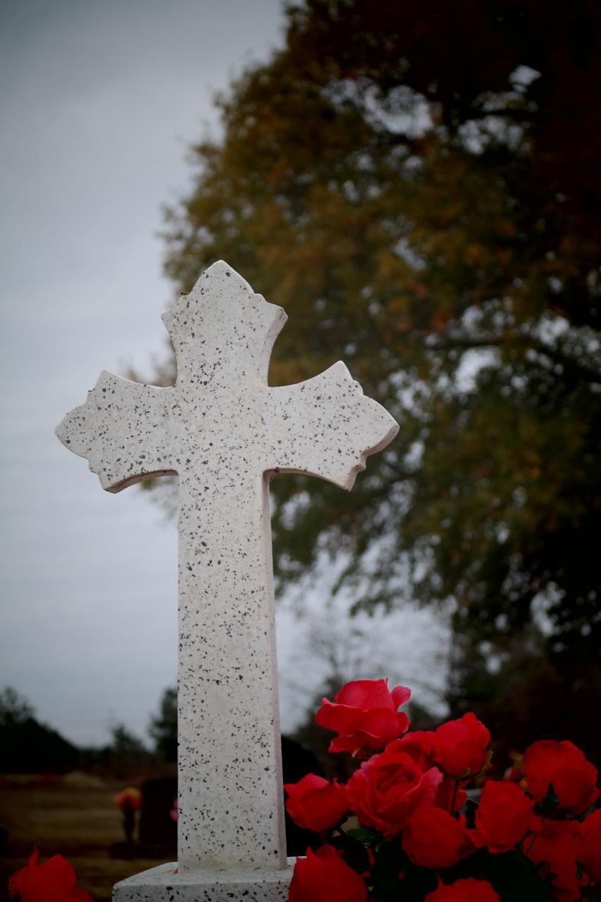 cross, cemetery, memorial, tombstone, tree, outdoors, religion, day, spirituality, no people, graveyard, gravestone, nature, sky, close-up
