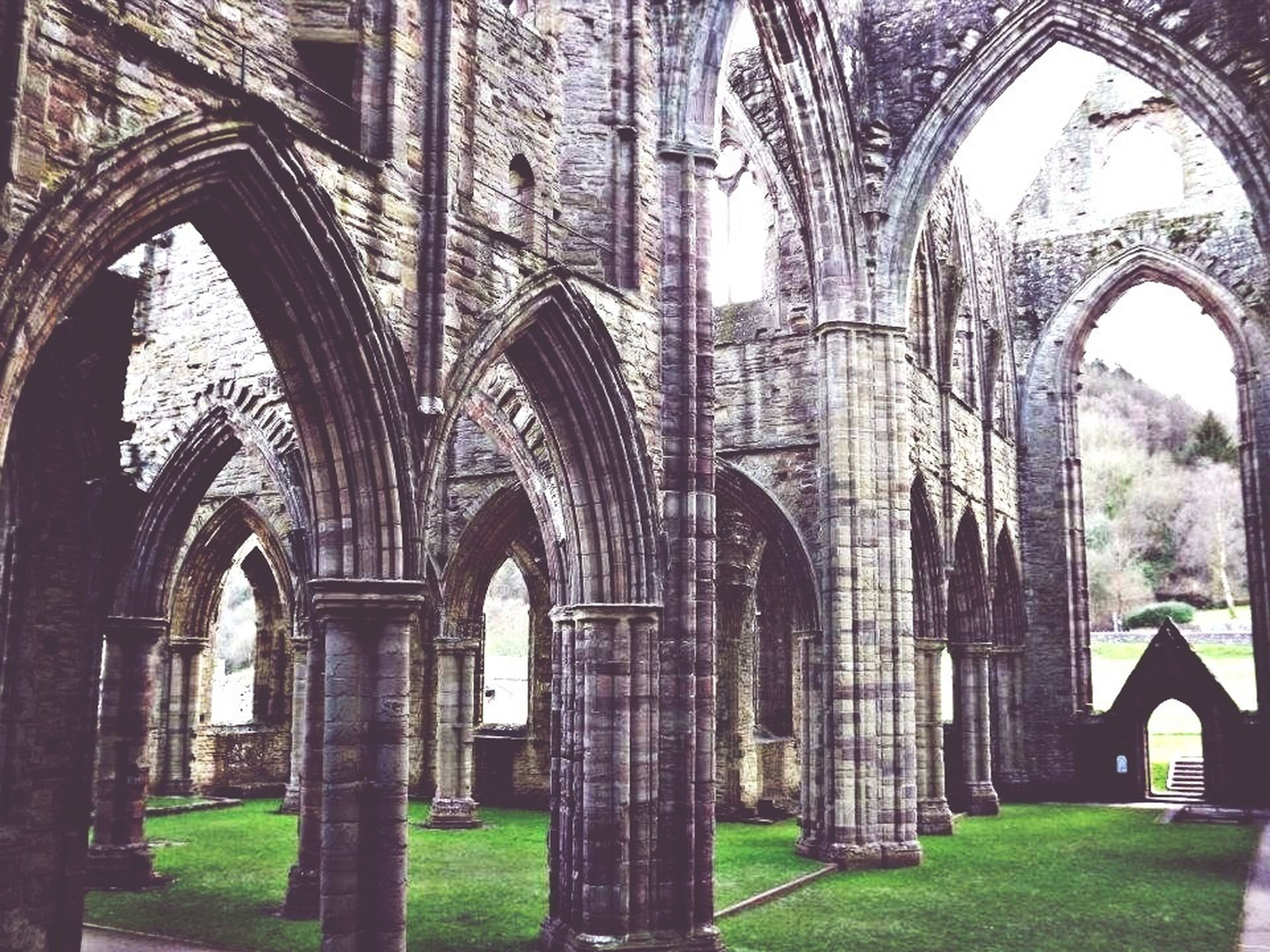 architecture, built structure, arch, building exterior, church, religion, place of worship, spirituality, window, history, old, grass, day, no people, cathedral, low angle view, outdoors, sky