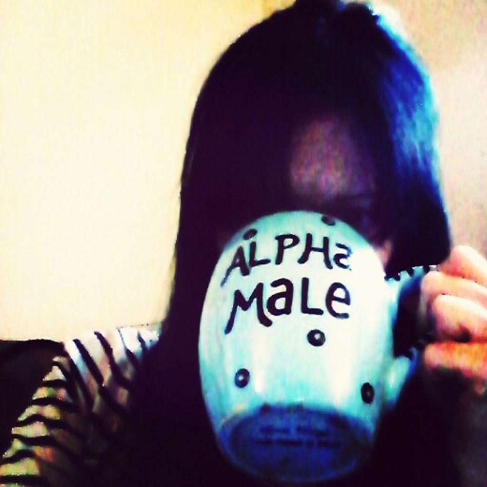 UWS Things At My Job Alpha Male Coffee Mug